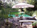 a bio lake in the garden