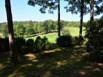 Back Yard and Old Golf Course