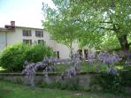 Front of the house with Wisteria in bloom