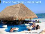 Omni beach bar located just down the beach