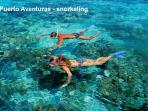 Puerto Aventuras offers many activities - Snorkelling in front of condo and Scub diving minutes away