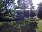 Jardim selvagem