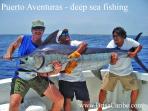 Puerto Aventuras offers many activites including Deep Sea fishing