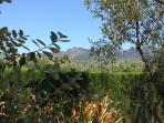 Finca Mountain Views & Trees, Alhaurin el Grande, Inland Costa Del Sol
