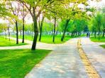 Balat Park(you can walk or jogging)