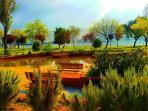 Balat Park