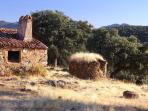 Old ruins in the territory, very interesting for photographers, many routes