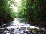 Visit Mayflower Bocawina National Park nearby