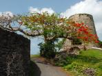 Annaberg Sugar Mill ruins.  great snorkeling and hiking nearby.  15 mins. from cottage
