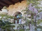 VILLA PUGLIESE Il glicine unit : only 900 m to the sea between secular olive trees