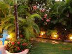 Eveningtime in the garden