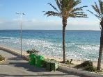 View of Mil Palmeras lovely sandy beach 800 mts from villa
