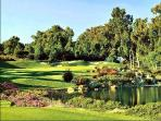 Imagine playing golf everyday here!