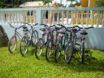 Part of our bike fleet available to guests!