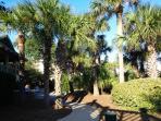 Disney Beach Access/Grill at Disney Beach!  The villa has beach chairs, umbrellas & sand toys.