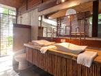 The Puffer Fish room en suite- jungle view shower, double vanities and hot water