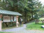 Take a walk to the nearby Hafod estate