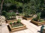 Herb boxes for the guests to enjoy