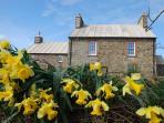 Rhos y Cribed Farmhouse & Bwthyn (cottage)
