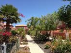 Jardines Casa Costa Golf, variedad de flores y plantas tropicales
