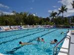Jr. Olympic Size Heated Pool W/Jacuzzi Tub