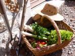 Summer veg from the potager