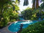 Lovely shared 44' free form 'jungle' swimming pool