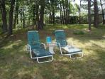 Chaise Lounges for your use - 139 Clearwater Drive Harwich Cape Cod New England Vacation Rentals