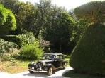 1952 Citroen Traction for Sunday outings