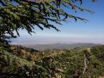 View from Troodos