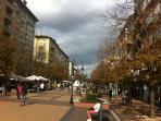 The main Sofia pedestrian area is at 200m from the apartment - shops, bars and restaurants