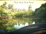 Historical pond at Punalu'u