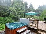 Hot Tub & Large, Wrap Around Deck with Lots of privacy and a beautiful ravine
