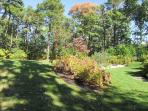 Side yard, lovely plantings throughout yard