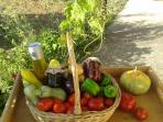 Basket of local products