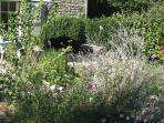 A quiet spot in the garden