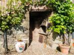 the wood oven in the garden