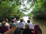 Places of Interest: Caroni Bird Sanctuary