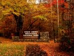 Enjoy beautiful fall in the Smoky Mountain National Park
