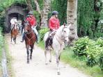 Passeio equestre na Serra de Sintra