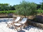 Relax by the olive and vineyard