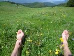 Activité à pratiquer : Se reposer et ne rien faire