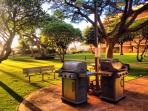Gas grills for guests