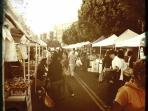 Nearby Sunday Farmer's Market