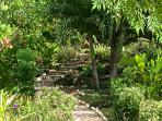 Stroll through our tropical garden on our cobblestone pathway to the beach!