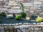 parterre de hierbas aromáticas