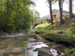 Jarrett Creek