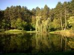 Lake View., Tamasi
