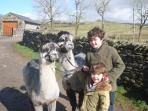 Our young guests on their 2nd visit to Simgill Farm enjoying our Alpacas