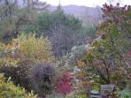 Ladywood main garden in autumn